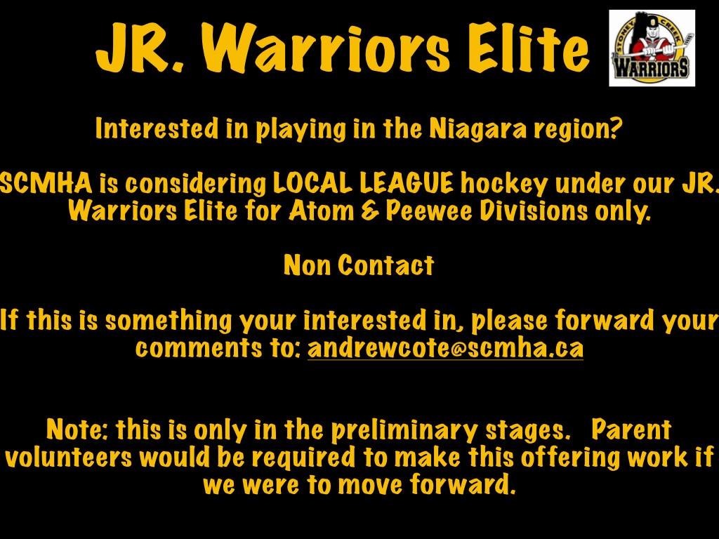 Local_League_Flyer.png